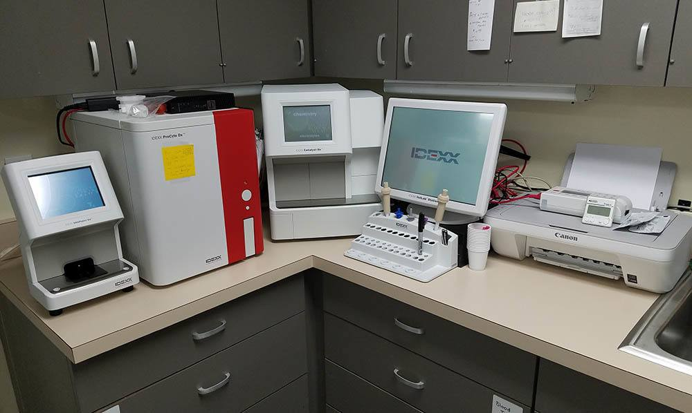 In-house lab station at Animal Medical Clinic of Merle Hay