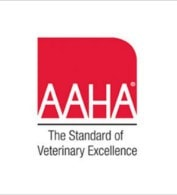 AAHA accredited animal hospital in Dover