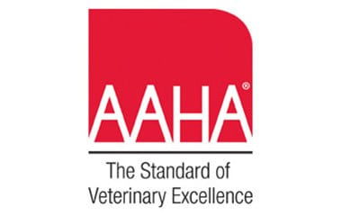 AAHA accreditation at Black Forest Veterinary Clinic in Colorado Springs, Colorado
