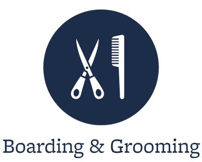 Grooming for your pets in St. Simons Island