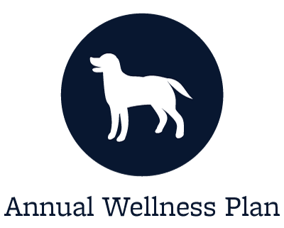 Animal Hospital wellness plans offered in Kent