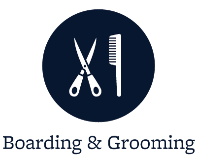 Grooming for your pets in Danville