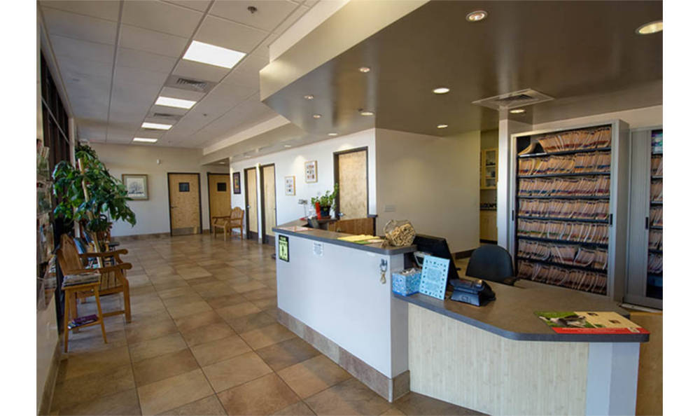 Camelwest Animal Hospital main lobby