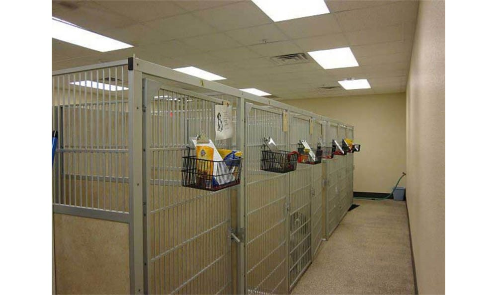 Our Kennels at Novak Animal Care Center