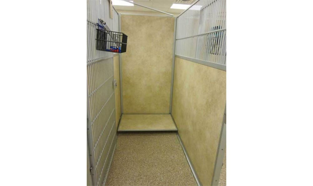 Long kennel at Novak Animal Care Center