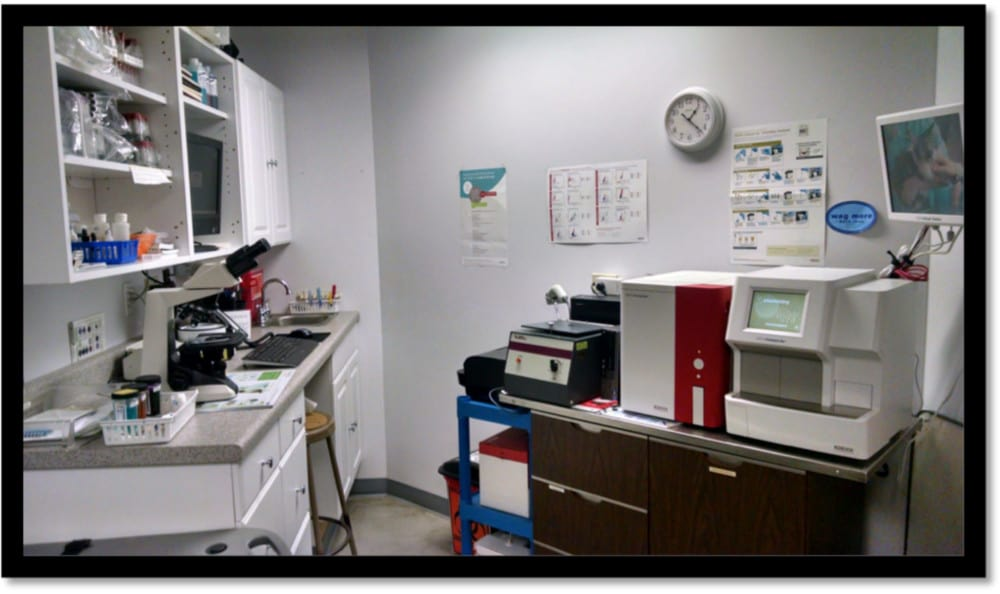 The veterinary facilities at Minooka Animal Hospital are modern and clean
