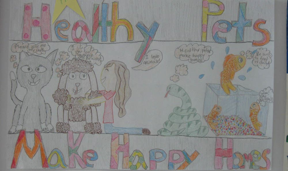 1st place healthy pets coloring at Macedon Veterinary Care in Macedon
