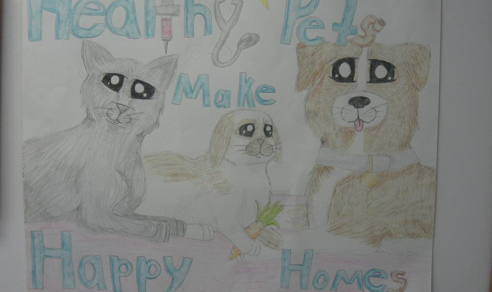 Macedon Veterinary Care 2nd place healthy pets coloring in Macedon