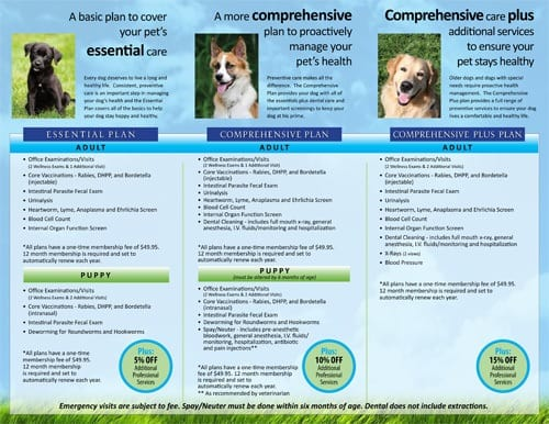 Dog wellness plans at Palm Glen Animal Hospital.