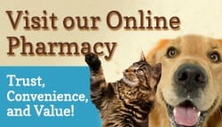 Online Pharmacy at Stafford Veterinary Hospital
