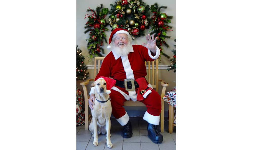 Santa Sitting With A Dog At Hidden Valley Animal Hospital & Boarding