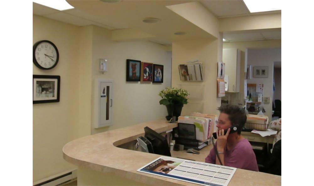 Reception at Cedarwood Veterinary Clinic