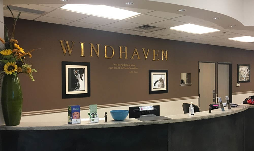 Front lobby of Windhaven Veterinary Hospital in {location_city}}