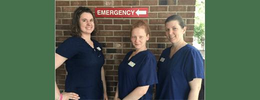 Technicians at Quail Corners Animal Hospital