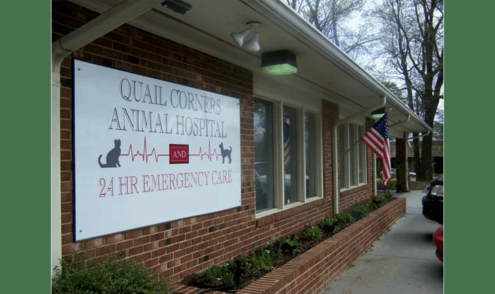Raleigh Animal Hospital Exterior