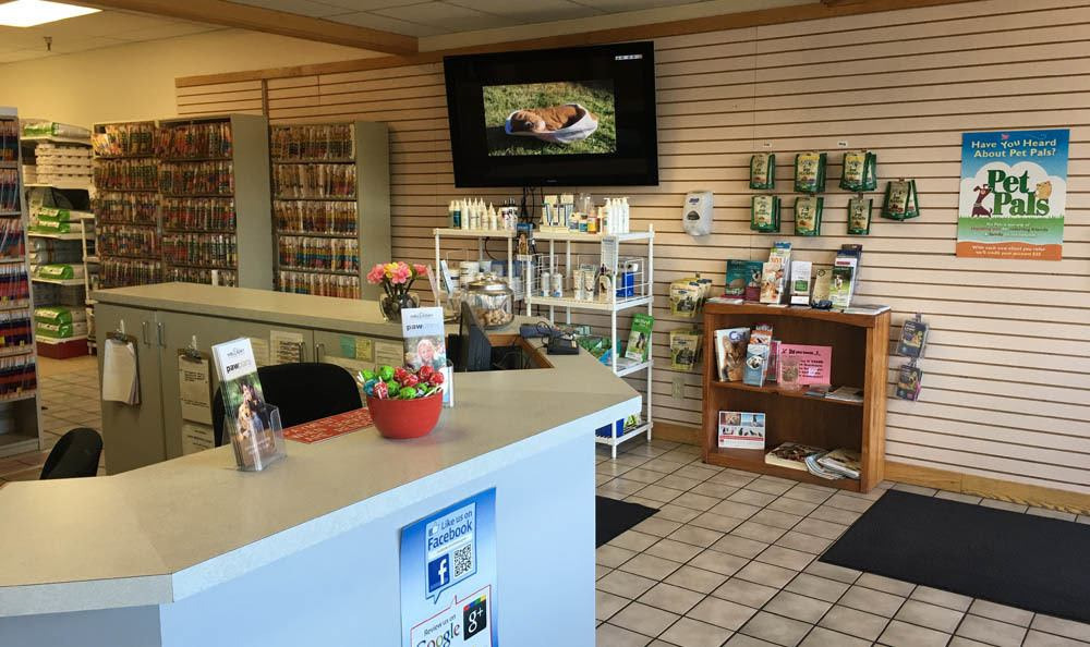 Records And Pet Treats At Holladay Veterinary Hospital