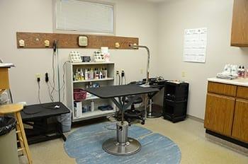 Kokomo Animal Hospital in Kokomo exam room