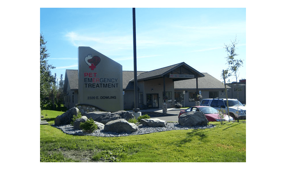 Animal Hospital in Anchorage