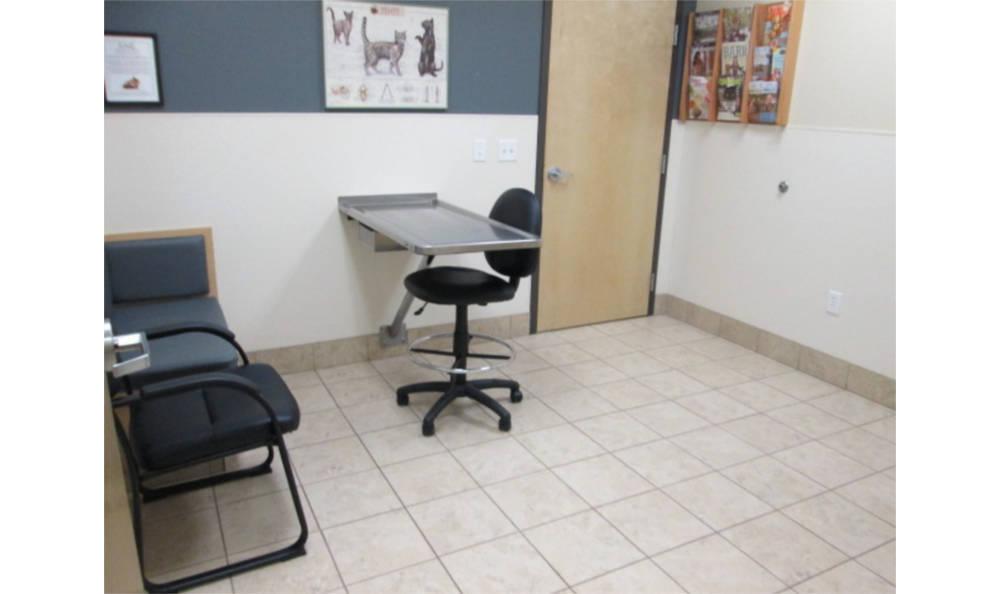 Feline exam room at Animal Hospital in Eagle