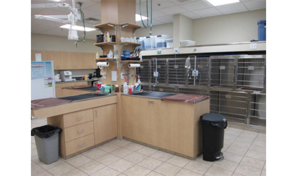 Eagle Animal Hospital treatment area