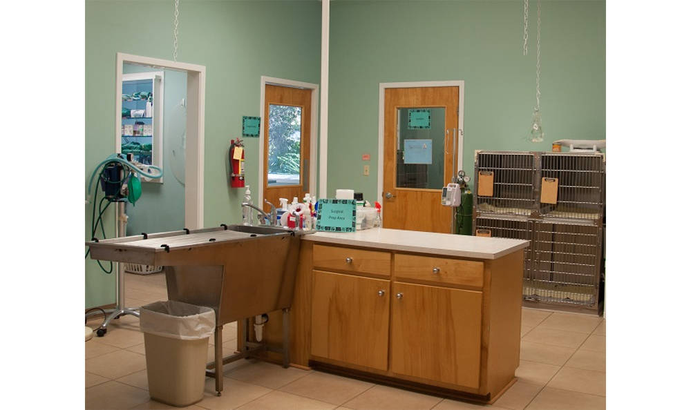 St. Simons Island Animal Hospital lab