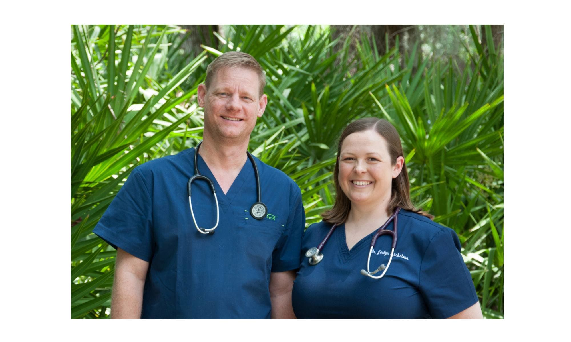 Animal hospital in St. Simons Island, GA