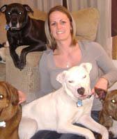 Team Member at Dover Animal Hospital