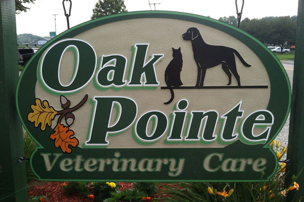 Welcome to Oak Pointe Veterinary Care in Dover, OH