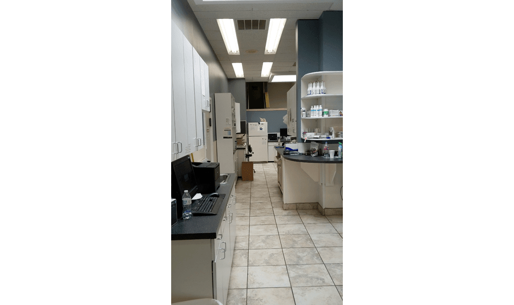 Lubbock animal hospital treatment area and exam room