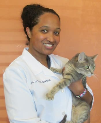 Dr. LaToyia Bowman, Veterinarian in Roselle Animal Hospital