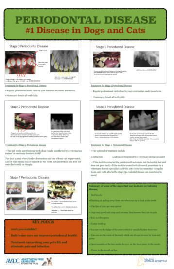 Periodontal Disease Poster from Sumner Veterinary Hospital