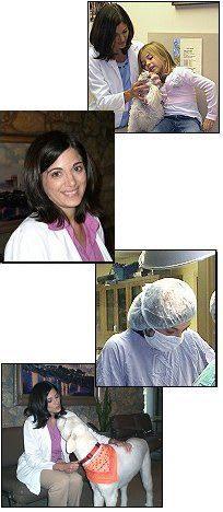 Dr. Christine Kunzweiler at Tulsa animal hospital