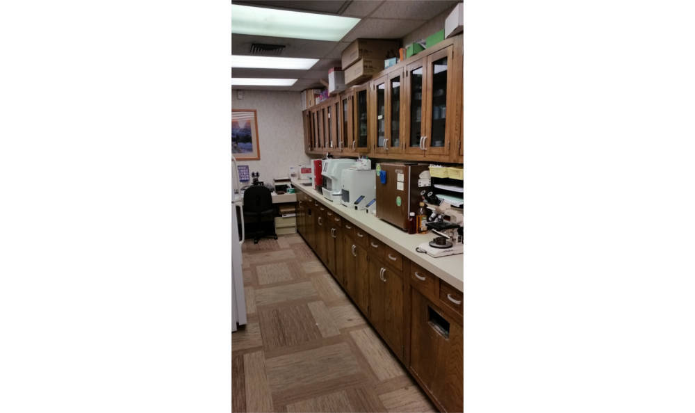 Our lab at Veterinary Associates