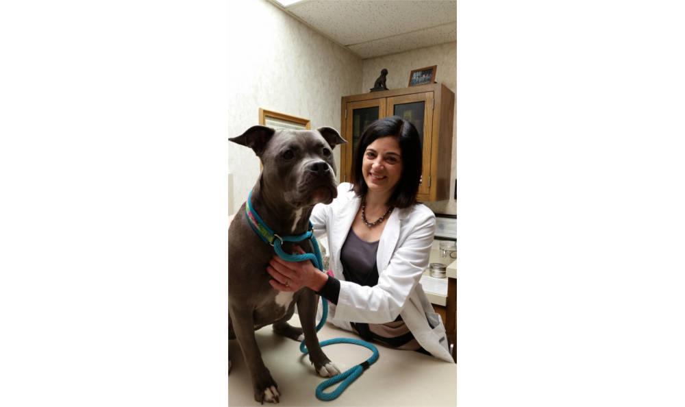 Dr. Kunzweiler with a patient in Veterinary Associates