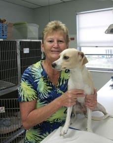 Caryn Potter, Veterinary Assistant at Bradenton Animal Hospital