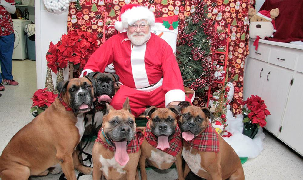 Santa at Bradenton Animal Hospital