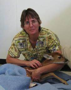 Sherry Hines, Lead CVT at Bradenton Animal Hospital