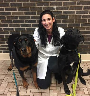 Dr. Ellis at Elkhart Animal Hospital