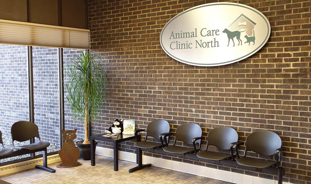 Cat wait room at Elkhart Animal Hospital
