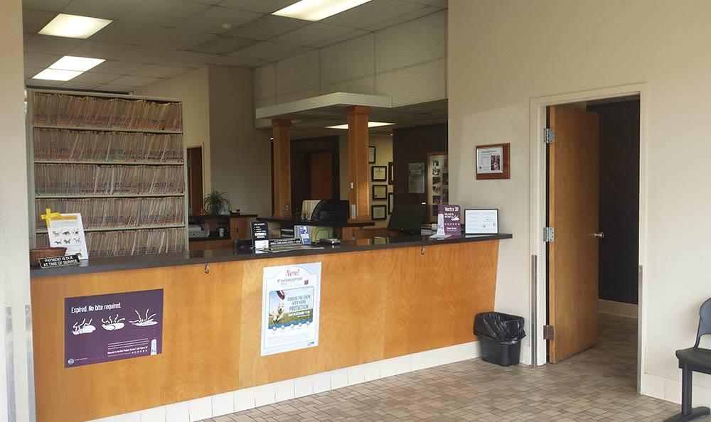 Dog reception at Elkhart Animal Hospital