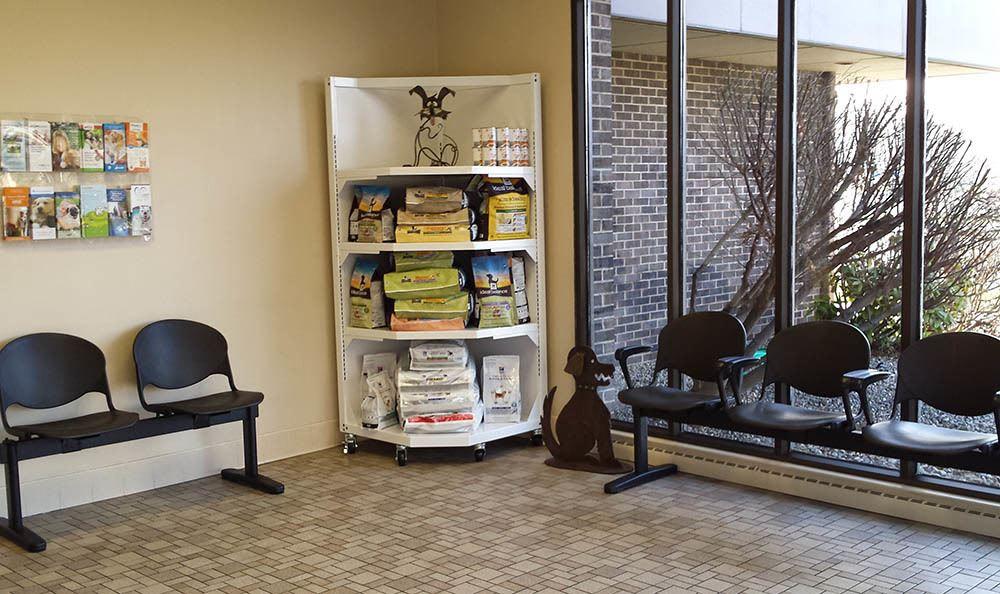 Elkhart dog wait room