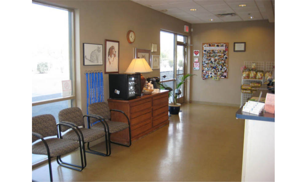 Lobby at Pima North Animal Hospital