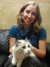 Dr. Erika Nelson at animal hospital in Sumner
