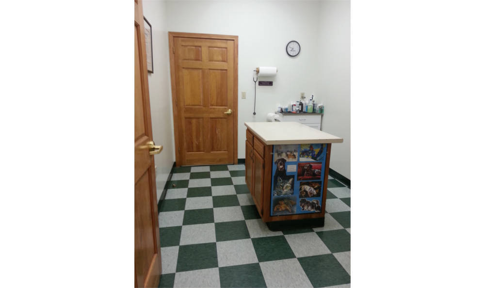 Exam room in Westover Animal Clinic