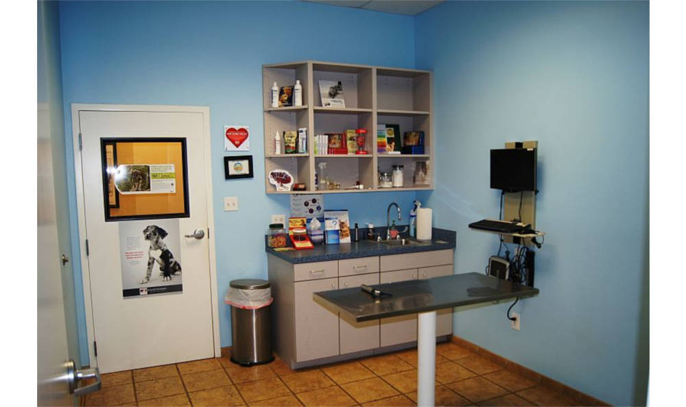 Exam room in O'Connor Road Animal Hospital