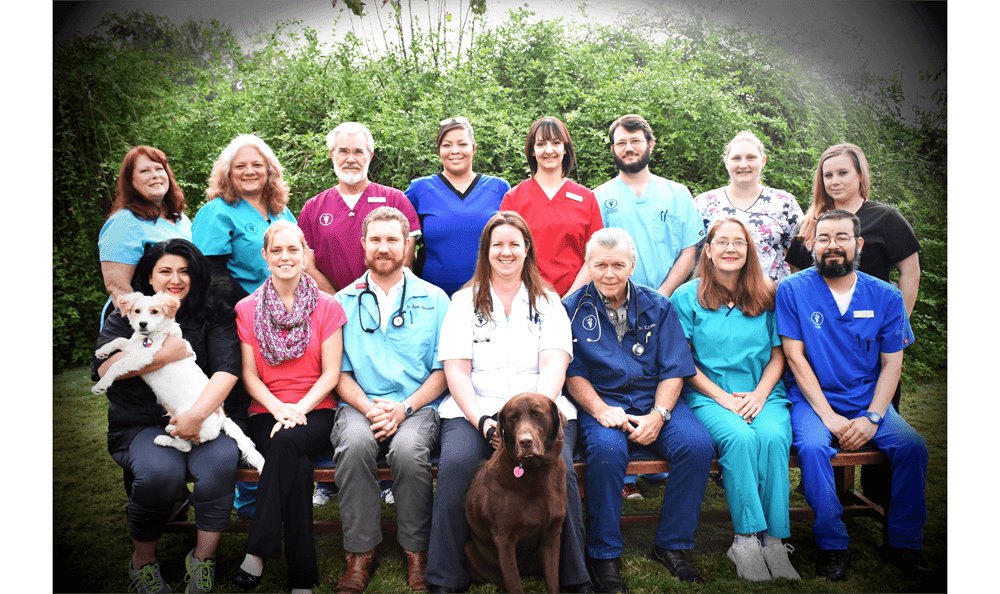 Our Team at San Antonio Animal Hospital
