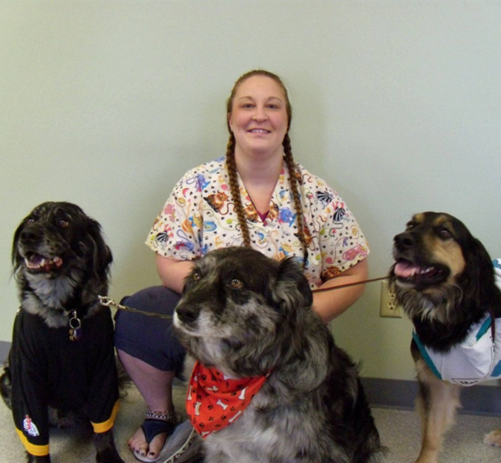 Vet Assistant with a group of dogs at All City Pet Care Veterinary Emergency Hospital