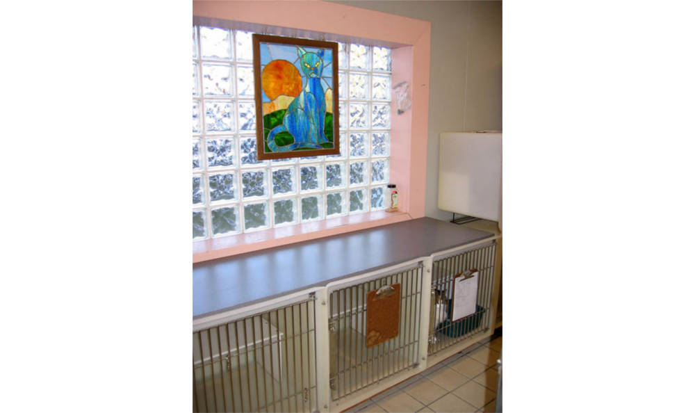 Creature Comfort Animal Clinic kennels