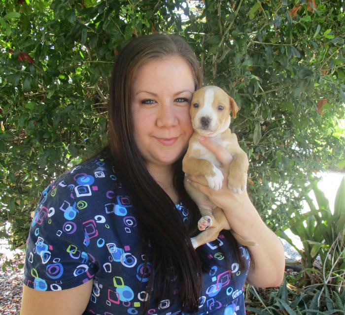 Amy Jacobs Cortez animal hospital