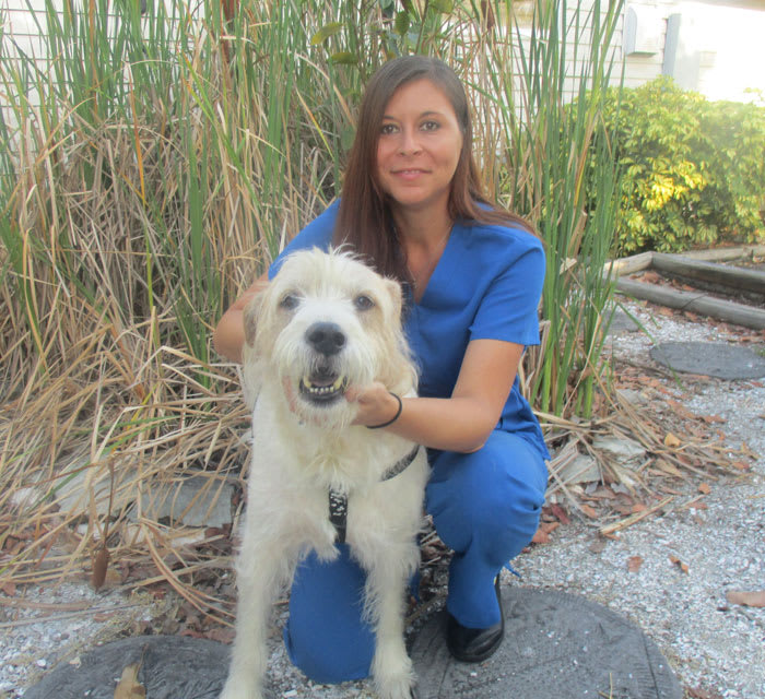 Chanene Wimmer at Cortez animal hospital